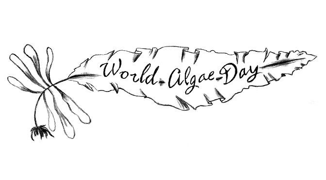 world algae day